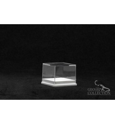 BB004 - Transparent box with white base 28x28x22 mm.