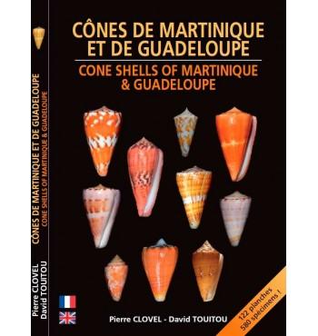 Cônes de Martinique et de Guadeloupe - Cone Shells of Martinique & Guadeloupe