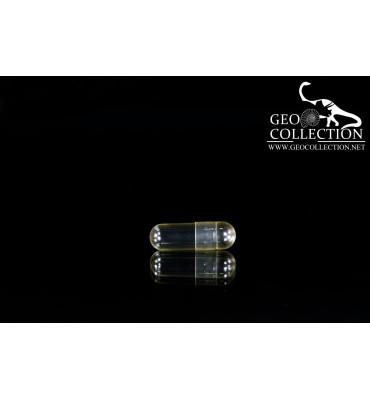 Transparent gelatin capsules ø 7 x 24.1 mm - CG004