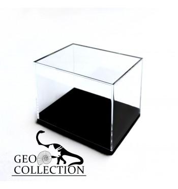 Scatola trasparente con base nera mm 56x42x43