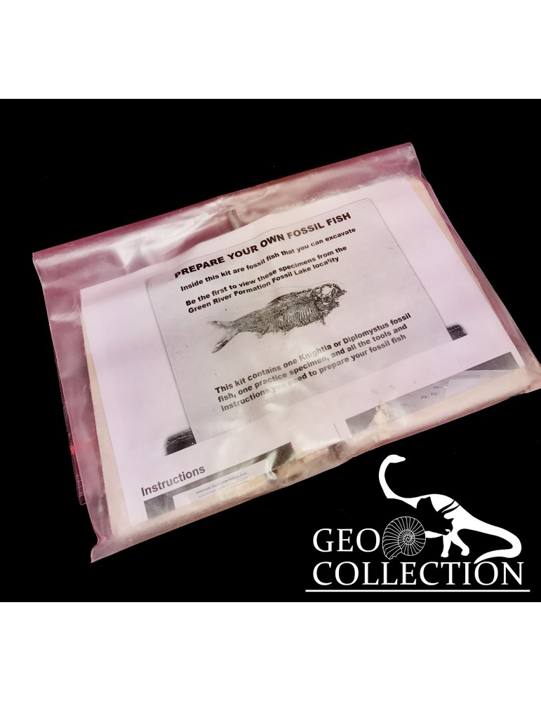 Base acrilico trasparente mm 45x30x10