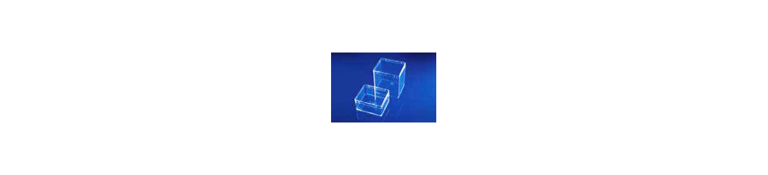 Rectangular and square transparent boxes for fossils, minerals